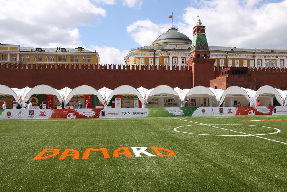 Строительство футбольного поля с натуральным газоном 11