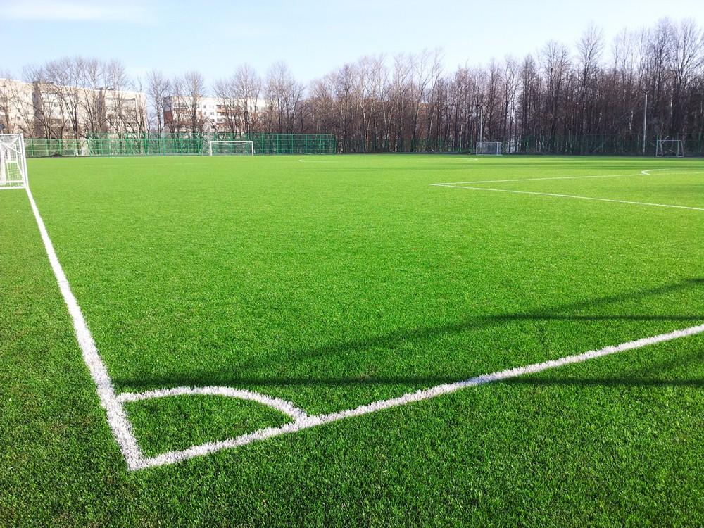 Строительство футбольного поля с натуральным газоном 5